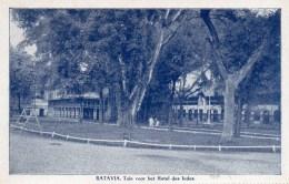 BATAVIA)  -JAVA-  HOTEL DES INDES -(PARC )   PHOTO COULEUR  AVEC LISERE -ECRITE  TBE - Hoteles & Restaurantes