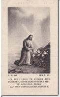 Doodsprentje (7319) Loenhout - VERMEIREN 1926 - 1945 Oorlogsslachtoffer - Oorlog - Images Religieuses