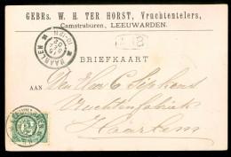 HANDGESCHREVEN BRIEFKAART Uit 1902 Gelopen Van LEEUWRDEN Naar HAARLEM (10.519L) - Periode 1891-1948 (Wilhelmina)