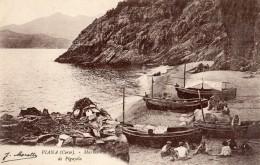PIANA MARINE DE PIGAYOLA - Ajaccio