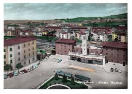 POGGIBONSI  PIAZZA MAZZINI  1967 - Siena