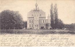 Château D'Ouhar (précurseur, 1903) - Anthisnes
