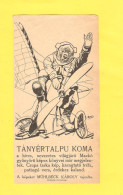 The Old Advertising Leaflet, Label - Hungary  RR - Other