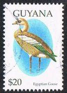 Guyana SG4334 1995 Birds $20 Good/fine Used [17/16158/1D] - Guyana (1966-...)