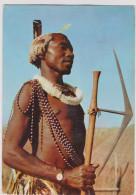 SWAZILAND Swazi Warrior South Africa Zuid Afrika Afrique Du Sud Tribesmen Tribe Tribu Etnic Etnisch CPA Africa Afrika - Kenya