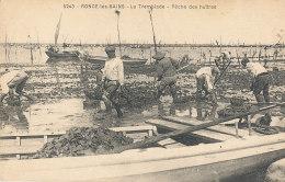 17 // RONCE LES BAINS    La Tremblade, Peche Des Huitres  5243 - France