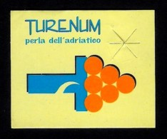 # UVA TURENUM - TABLE GRAPE Italy Fruit Tag Balise Etiqueta Anhänger Cartellino Uva Raisin Uvas Traube - Fruits & Vegetables