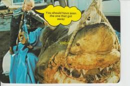 The Great White Shark Expo - Gold Coast
