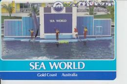 Sea World - Gold Coast