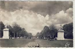 PARIS - Avenue Des Champs-Elysees, - Transport Urbain En Surface