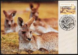 Australia/Australie: Intero, Stationery, Entier, Canguro, Kangourou, Kangaroo - Postzegels
