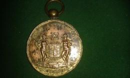 1887, Edouard Grielens, Opening Van De Vogelmarkt, Stad Antwerpen, 5de Wijk, 42 Gram (med301) - Souvenirmunten (elongated Coins)