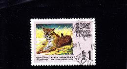 1970 - CEYLON / SRI LANKA - O/FINE CANCELLED - LEOPARD - Mi 398    Yv 416 - Sri Lanka (Ceylon) (1948-...)