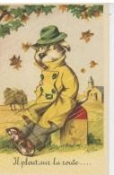 """CHATS - CAT - Jolie Carte Fantaisie Chat Humanisé  """"Il Pleut Sur La Route  """" - Art Shop - Katten"""