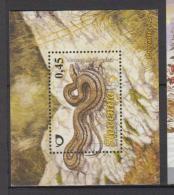 Slovénie YV BF 27  N 2008 Serpent - Serpents