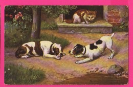 "CPA (RÉF : VV935) (THÈME>ANIMAUX>CHATS) Chat ""chiens Face à Face"" - Gatti"