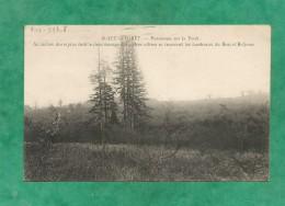 Saint-Leu-La-Forêt (95-Val-d'Oise) Panorama Sur La Forêt... Tombeaux De Bosc Et Beljame 2 Scans 1928 - Saint Leu La Foret