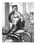 TOM OF FINLAND GAY INTEREST POSTCARD 71 -  SIZE: 15X10 CM. APROX. MINT - Cómics
