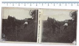 Glass Positive STEREOSCOPICA - Contadino, Cavallo Aratro - Lastra In Vetro - Cartoline Stereoscopiche