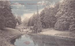 Sint Truiden Saint Trond -  Pont Rustique Dans Le Parc (animation, Colorisée, Marcovici, 1913) - Sint-Truiden