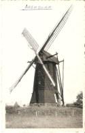 Arendonk  : De Windmolen --- Toremansmolen  --  Wampenberg - Arendonk