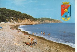 Saint Mandrier - Plage De La Coudoulière - 1979 - Saint-Mandrier-sur-Mer