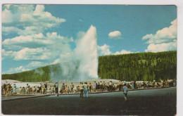 Yellowstone National Park Old Faithful Geyser Wyoming United States - Yellowstone