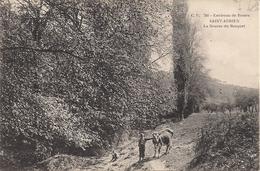 CPA - 76 - Rouen - Saint Adrien - Animée - La Source Du Becquet - Vache - Rouen