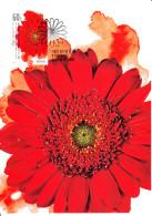 Australia 2011 Maxicard Scott #3419 60c Gerbera Daisy Floral Festivals First Day Issue - Fleurs