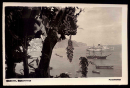 MADEIRA BANANEIRAS - Baia Do Funchal Com Barcos Navio Veleiro - Vintage Real Photo Postcard PERESTRELLOS Portugal - Madeira
