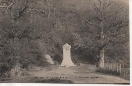 CPA - CERNAY LA VILLE - LE MONUMENT PELOUSE - 94 - T. B. E. - PRECURSEUR - France