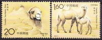 China 1993 Yvert 3156 / 57, Protection Of The Nature, Wild Camel, MNH - 1949 - ... République Populaire