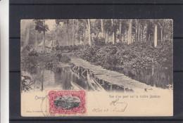 Congo Belge - Carte Postale De 1908 - Oblitération Lisala - Expédié Vers La Belgique - Bruxelles - Bateaux