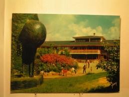 Dourdan - VVF - Pavillon Central Et Le Théatre De Verdure - Dourdan