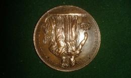 1834, Fete Jubilaire Cinquantieme Salon De Fleurs Gand, 20 Gram (med313) - Elongated Coins