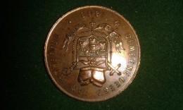 1868, Gemeenbeest Van Antwerpen, Van Put, 10 Gram (med315) - Elongated Coins