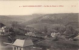 CPA - 76 - Saint Pierre En Port - Les Bois Du Manoir Et D'Élitot - Fécamp