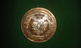 1901, Martin Hautecour, Dinant, 25e Ann. Fraternelle Dinantaise, 46 Gram (med329) - Pièces écrasées (Elongated Coins)