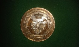1901, Martin Hautecour, Dinant, 25e Ann. Fraternelle Dinantaise, 46 Gram (med329) - Souvenirmunten (elongated Coins)