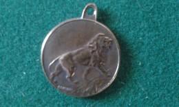 Hulde Aan De Verminkte Soldaten, Hommage Aux Soldats Invalides, 4 Gram (med349) - Monete Allungate (penny Souvenirs)