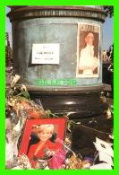 FAMILLES ROYALES - LADY DIANA, PRINCESSE DE GALLES - LIZ Mc KERNAN, JOURNALISTE - LIMITÉS À 2000 Ex - No 170 - - Royal Families