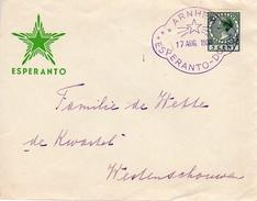 1938 Esperantobrief Met Stempel Van Arnhem Naar Westenschouwen - Periode 1891-1948 (Wilhelmina)