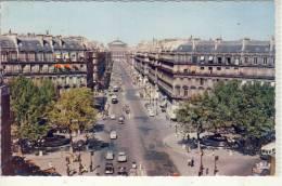 PARIS - Avenue De L'Opera - Transport Urbain En Surface