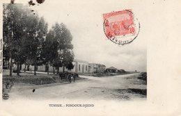 8670. CPA TUNISIE. FONDOUK-DJEDID - Tunisie