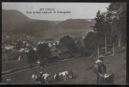 CPA - Non Voyagée - Ste-Croix - Vue Prise Depuis La Grangette - VD Vaud