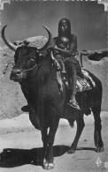 AFRIQUE 487   CPSM Petit Format  TCHAD  Boeuf Porteur      Belle Carte - Chad