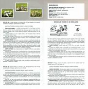 MICOLOGY - AGARICUS - AMANITA - MARASMIUS - DOCUMENT INSTRUCTIF DE L´ÉMISSION DE TIMBRE ESPAGNE - España