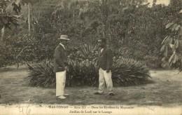 CONGO - BAS CONGO - DANS LES RIVIERES DU MAYUMBÉ - JARDINS DE LUALI SUR LE LOANGO - Congo Belga - Otros