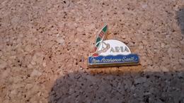 1 Pins Planche A Voile Assurance Sante  Aria   Arthus Bertrand - Arthus Bertrand