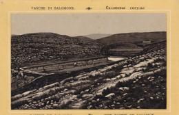 C1890s/1900s Vintage Picture Card Middle East, Basins Of Solomon At Temple Mount, Israel Image - Géographie